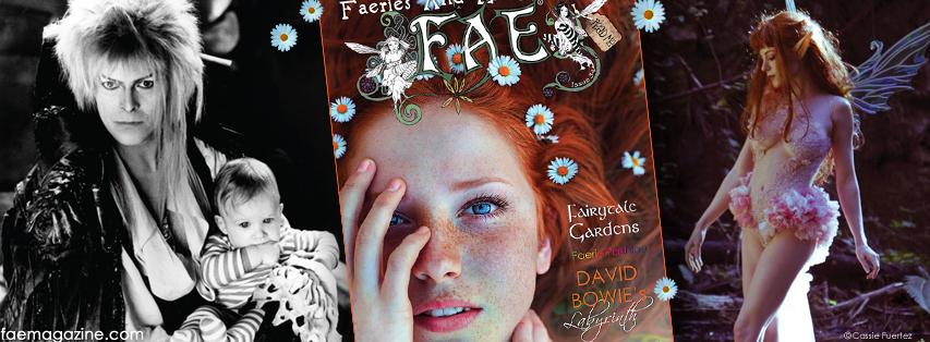FAE__FB_Cover_34